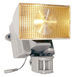 Motion-Activated Halogen Solar Security Floodlight